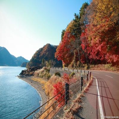 7 Hari Japan Impression+Momiji