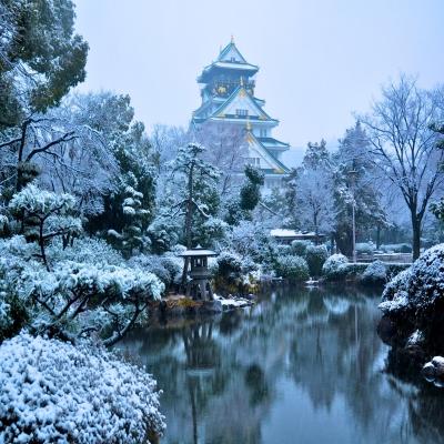 9 Hari 7 Malam All Theme Park Japan